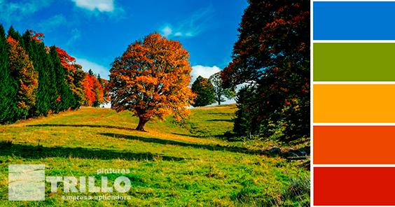 colores-otoño-decoracion-2