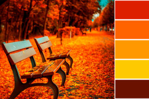 Colores de otoño para decorar