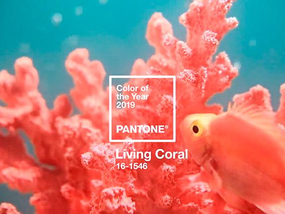 living-coral-color-pantone-2019